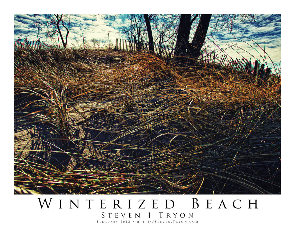 Winterized Beach