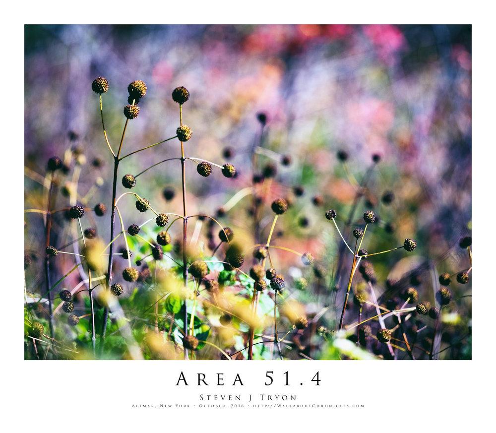 Area 51.4