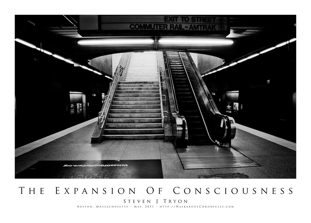 The Expansion Of Consciousness