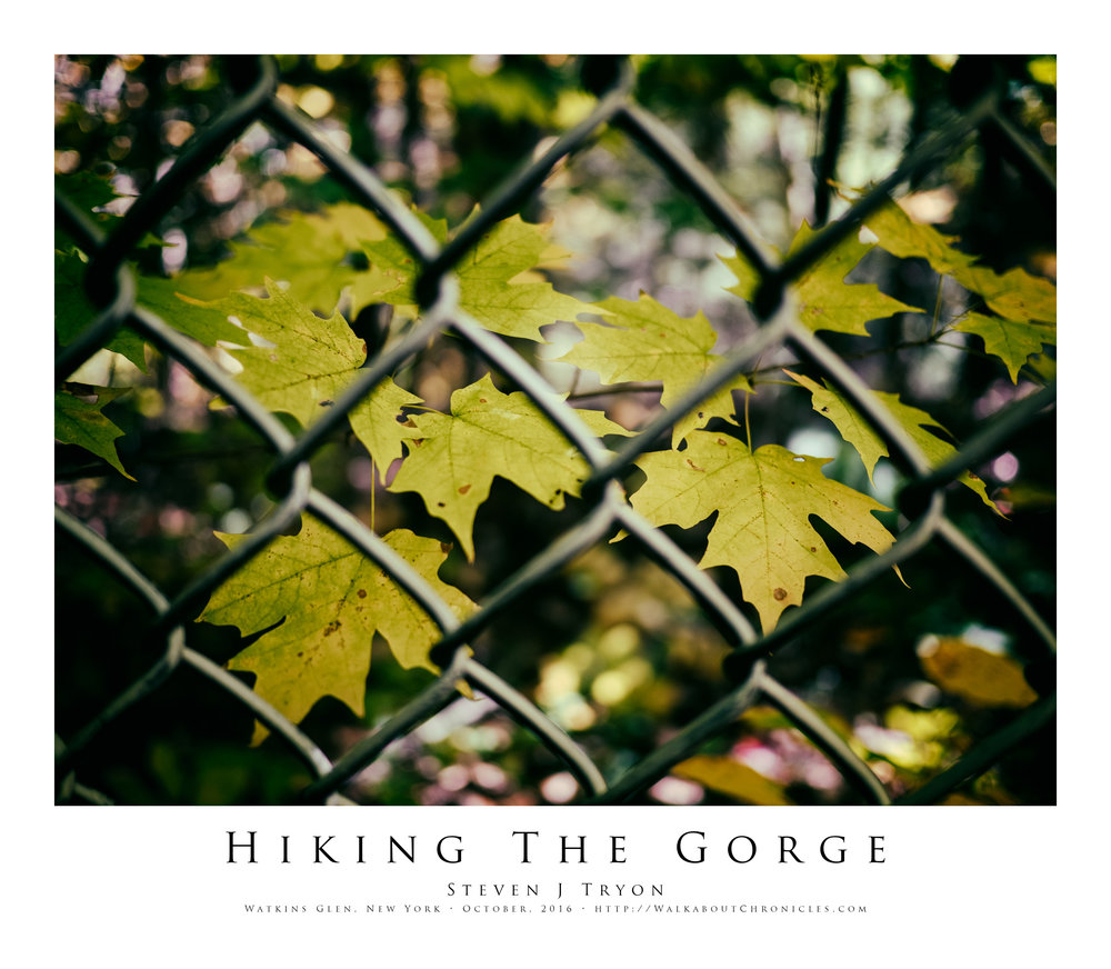 Hiking The Gorge
