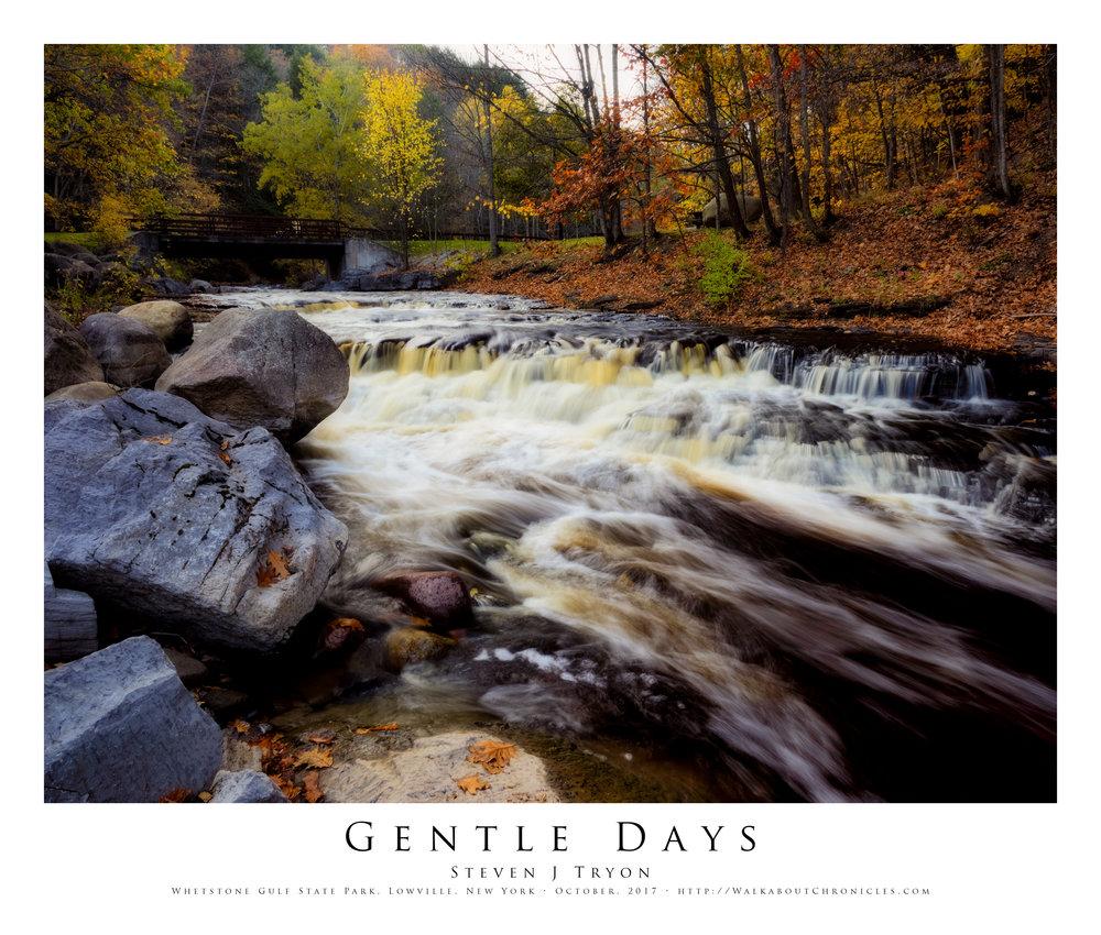 Gentle Days