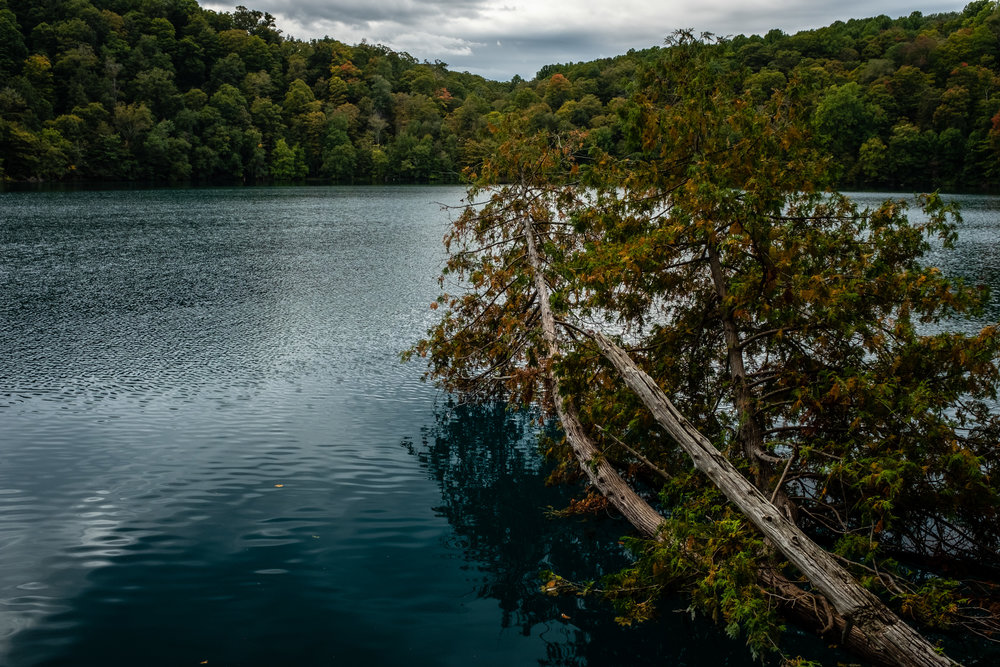 Green Lakes Ramble (Trees Meet Water)