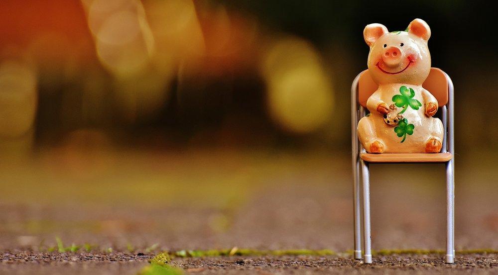 LUCKY PIG.jpg