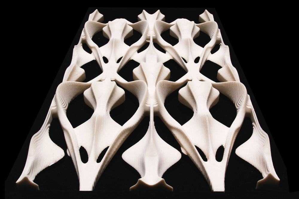 Osteonic Structures 001 website image.jpg