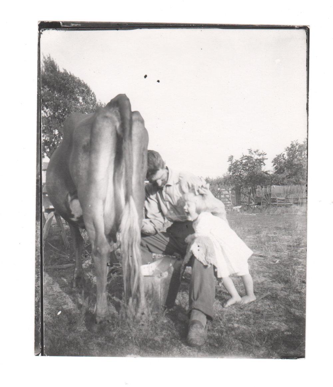 Milking Cow.jpg