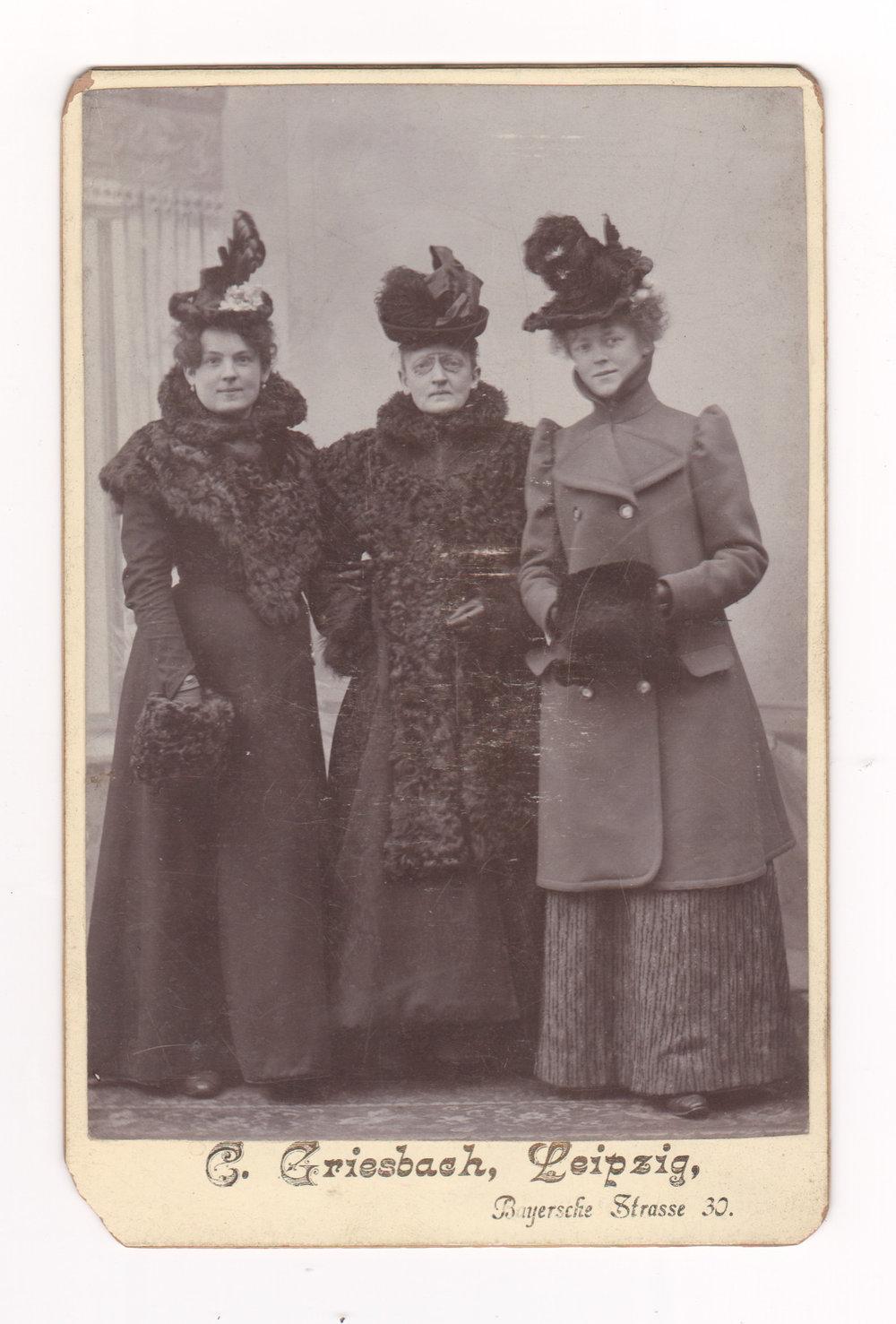 Tree Sisters.jpg