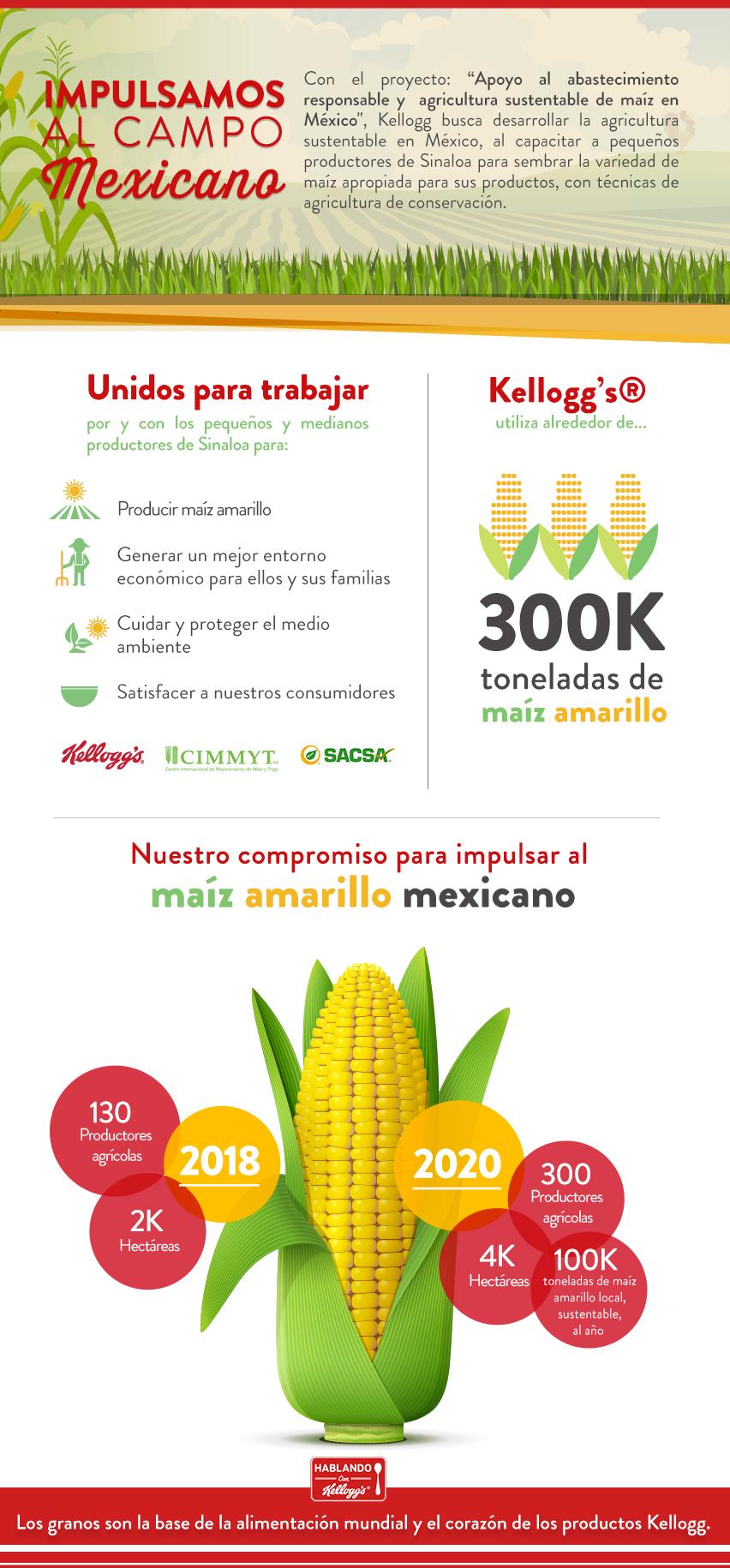 Infografía-maiz.png