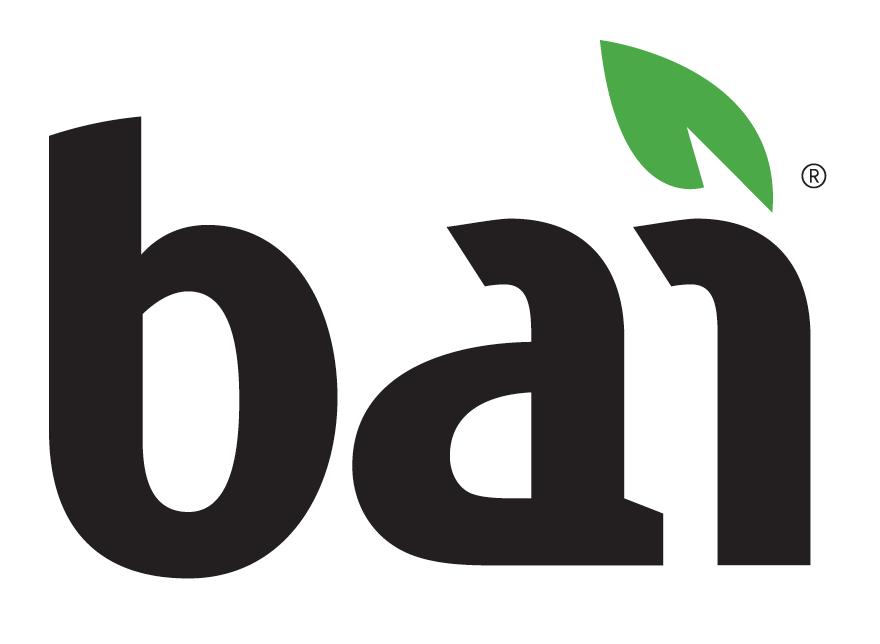 bai_logo.png