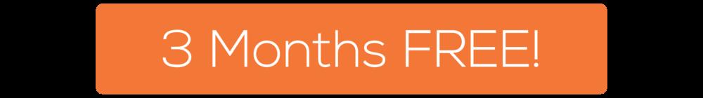 Bezlio-Landing-Logicity-Pro-Header-Bezlio-3-Months-Free-Button.png