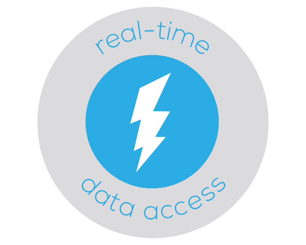 Illustrated badge of a lightning bolt that represents Bezlio's ability to access on-premises or cloud data in real-time.
