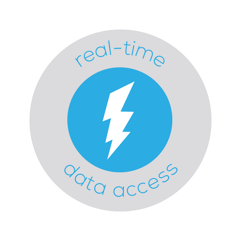 Real-Time Data Access