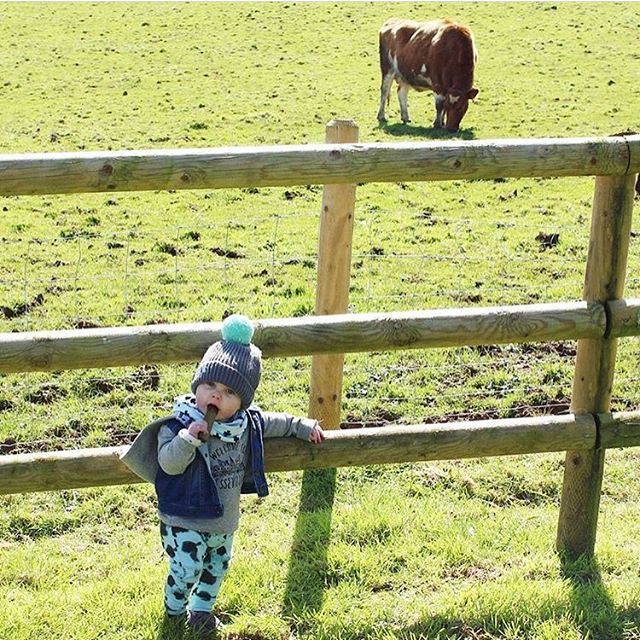 Hanging with the moo cows 🐮 @charlie_jesse_and_me I love this photo! Have a great Friday bobble babes! Let the countdown to the weekend commence! 🙌🏻💥 #bobblesforbabies #bobblehat #toddler #toddlerstyle #knittedhat #knitted #matchinghats #kidshat #babyhats #handmadehat #springstyle #spring #toddlerlife #toddlerfun #kidsstyle #kidsfashion