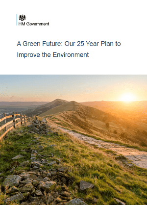 25-year-env-plan-picture.png