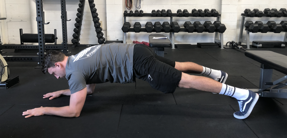 The plank trains anterior core FUNCTION by controlling extension moments.