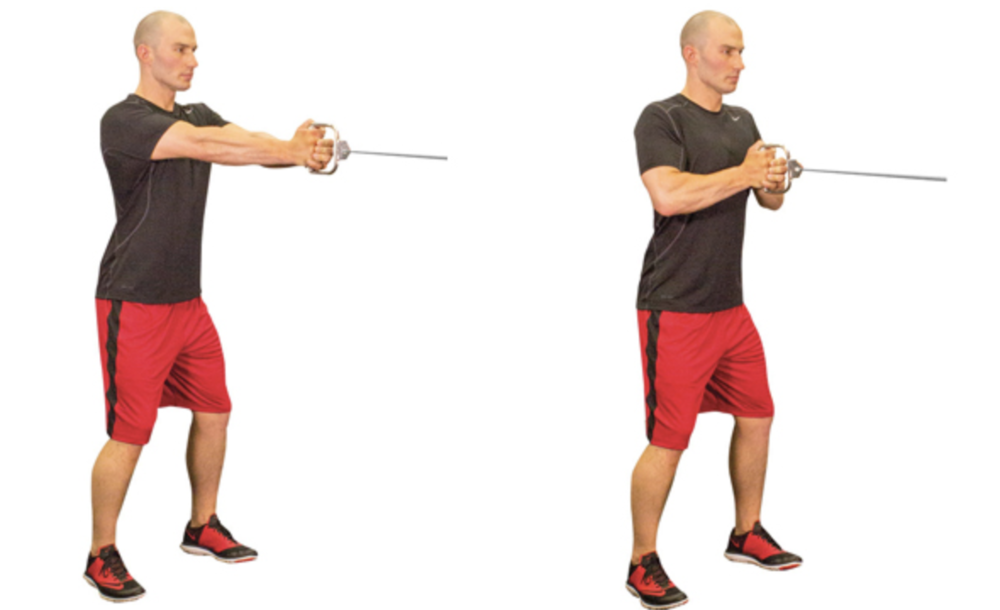The Pallof Press trains the core musculature's function of 'anti rotation'.