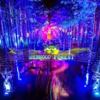 ELECTRIC FOREST June 22-25, June 29-July 2 Rothbury, MI Raver junkies can go harrrd from dusk 'til dawn at this festival buried deep in the woods of Michigan. It's eight nights of bass drops, epic costumes, and a lineup so dope that you'll wanna stay for both weekends. Electric Forest really is a day-glo wonderland -- it has all the headerliners of a massive EDM festival but with hammocks, drum circles, and a waaay more intimate vibe. Headliners: Bassnectar, Flume, DJ Snake, Odesza Don't miss: Dillion Francis, Banks, Cashmere Cat, Flint Eastwood Best for: the junkie who's a lil' bit of a tree-hugger.