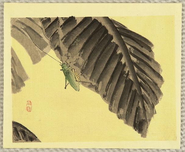 Grasshopper by Kono Bairei