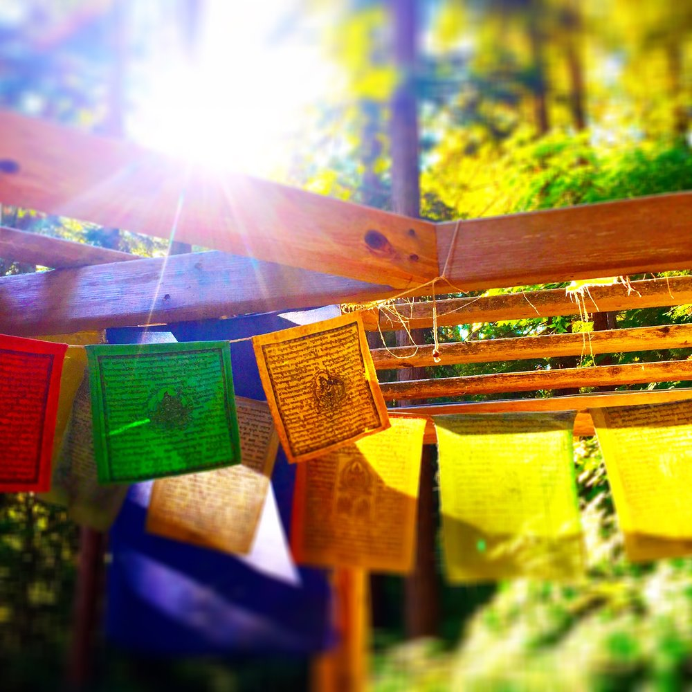 Prayer flags at Saint Dorothy's Rest, Sonoma, California, Summer, 2015.  Photo by Eric K. Carr