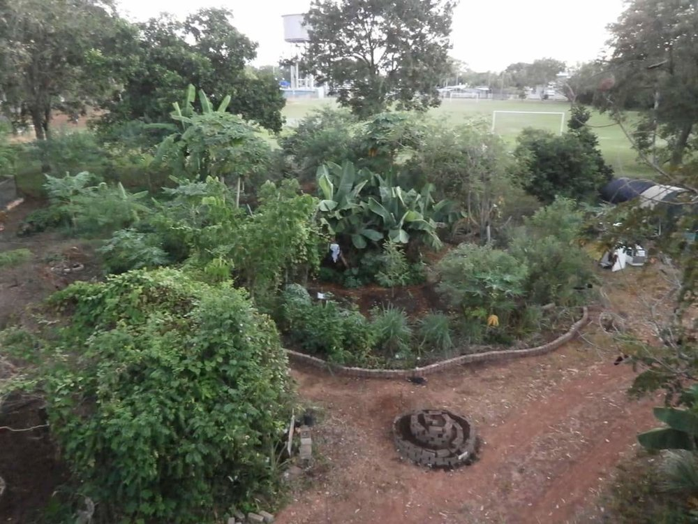 The Mulch Pit  permaculture garden, Rapid Creek NT