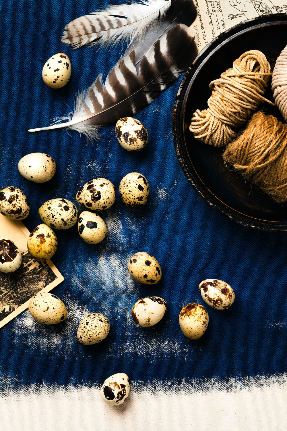 still-life-quail-eggs-lesliegrow.jpg