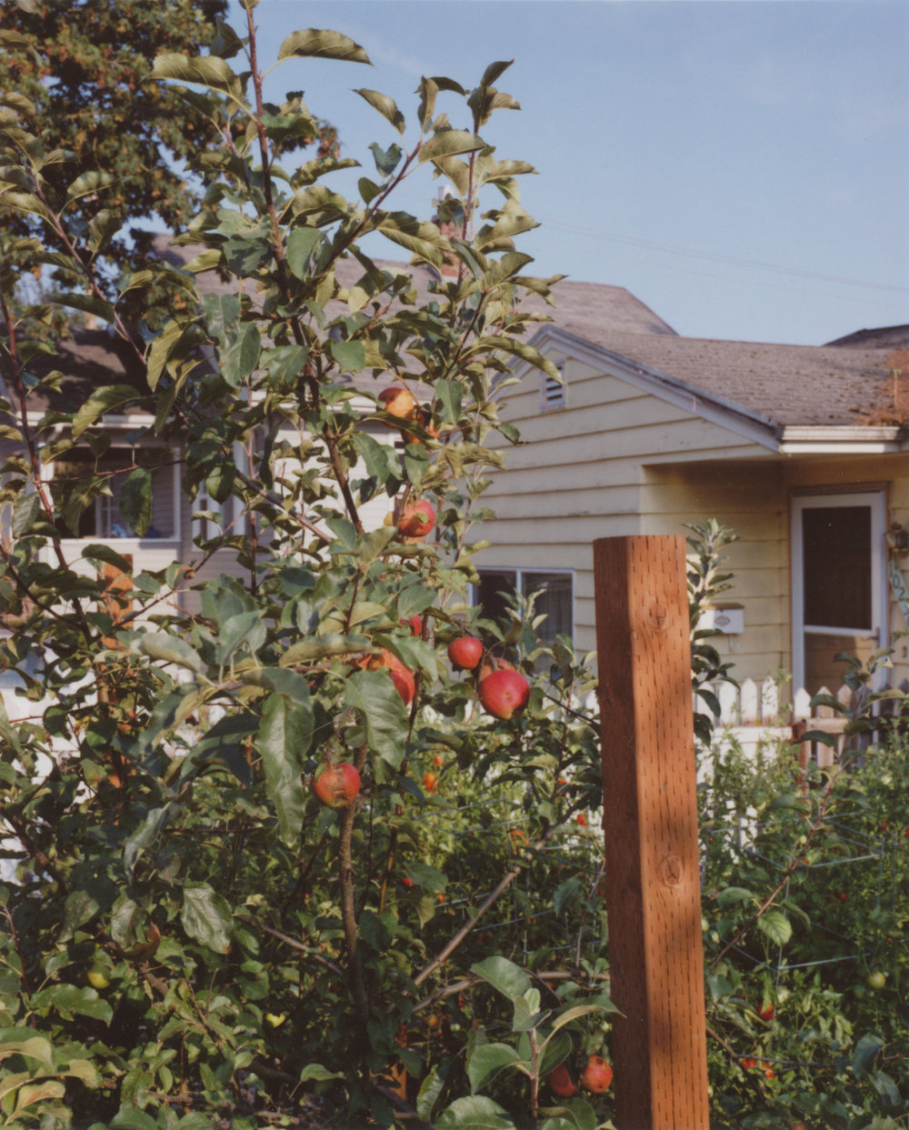 - Portland, Oregon2014Chromogenic print20 x 16 inches
