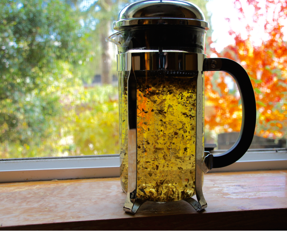 French Press Tea Brewing