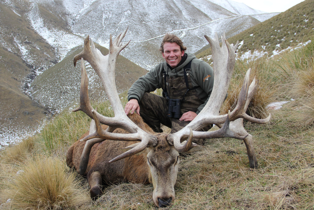 500 SCI class Red Stag