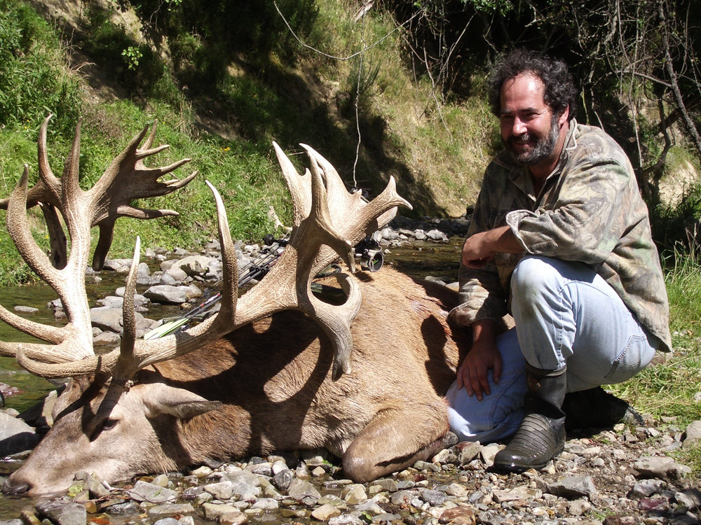 SCI World Record Archery Stag