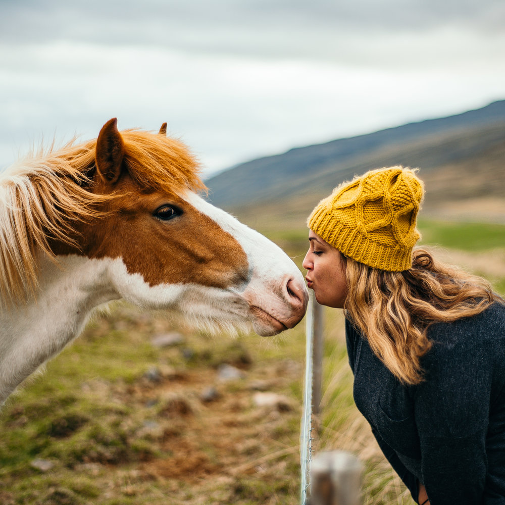 Her love for horses runs deep.  On an Icelandic adventure with her husband (2016)  - photo courtesy of  Ryan Brien