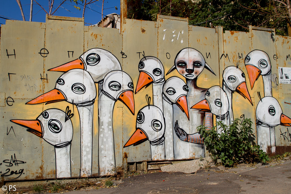 Klone, pic by Pavlina Schultz