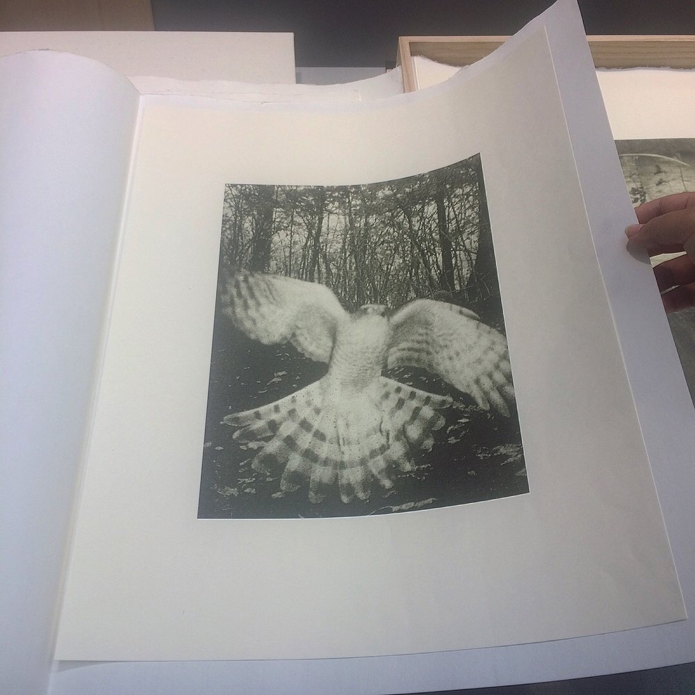 "One of Stephen Gill's collotype prints, part of his ""Night Procession"" portfolio, Edition of 12, Benrido Atelier, Tokyo"