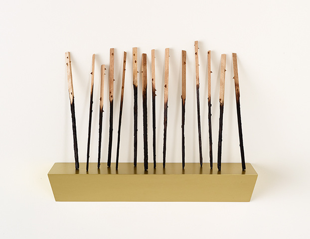 Flechazos , 2018, Charred wood, thorns, wood plinth, acrylic, 23.5 x 28.25 x 9 inches