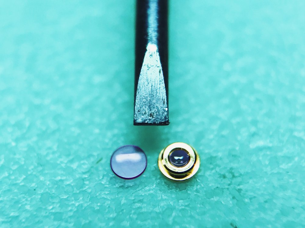 An ETA 2824's upper balance jewels, disassembled and next to a 1.00 mm screwdriver blade for scale.