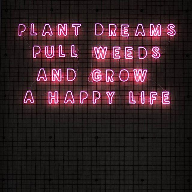 Life, in full bloom. 🌷#propergirl
