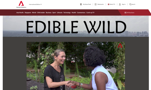 Edible-wild-channel-news-asia-mamakan-foraging-4.png