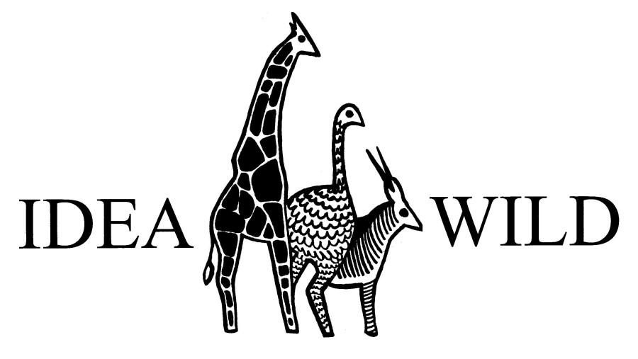 idea-wild-logo.jpg