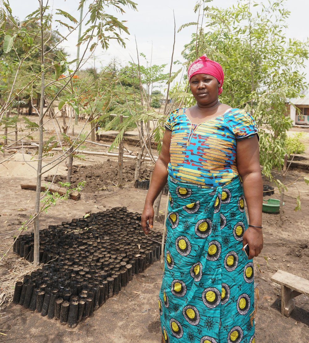 A volunteer women cares for the seeds in the tree nursery in Mpimbwe, November 2018