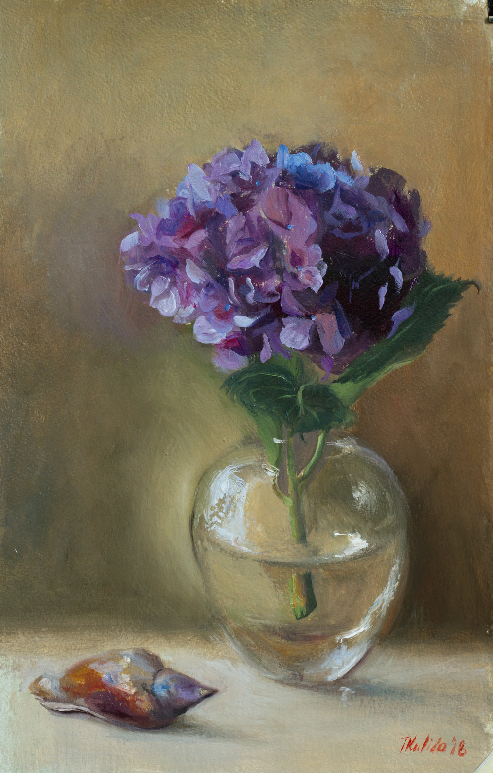 Hydrangea and a whelk,  study, oil on prepared paper, 28x43, February 2018