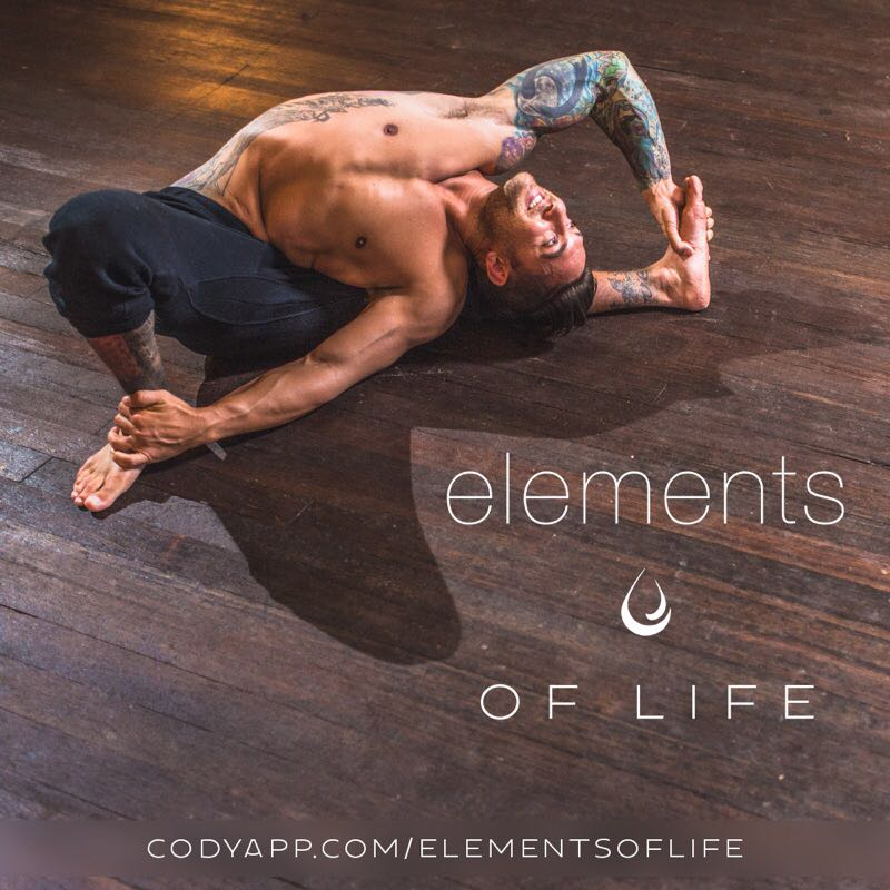Elements of Life    In yoga, each element has its own traits, poses, chakras, and energy – all of which reside within us. These five 60-90 minute practices will connect you to the elements by manifesting their physical and spiritual attributes in full-length, full-body flows.