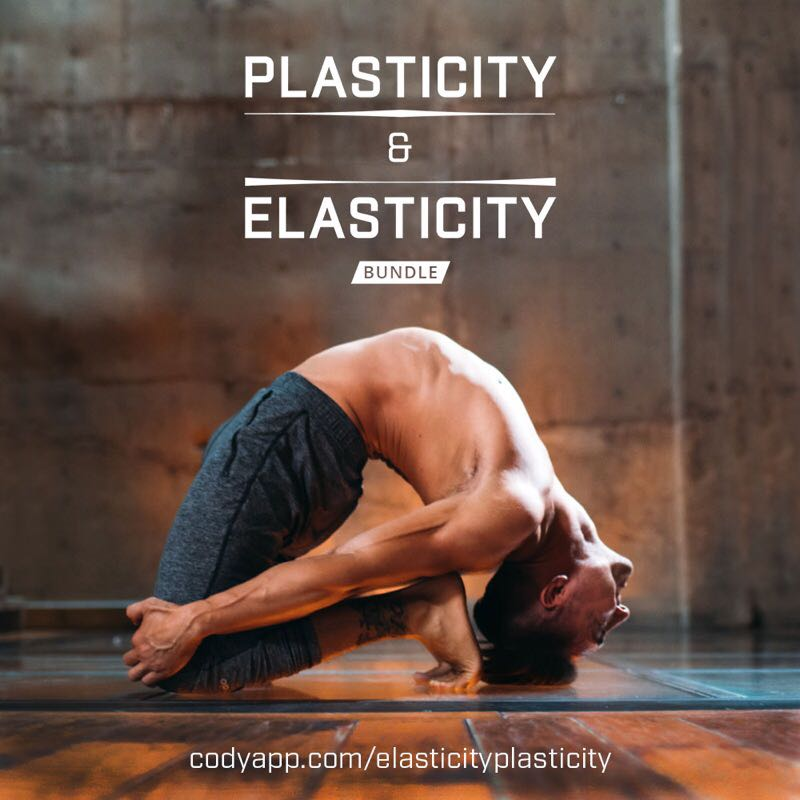 Elasticity & Plasticity Bundle The elasticity and plasticity of our fascia are directly responsible for our flexibility, mobility, balance, reflexes, and proprioception. When fascia loses its youthful bounce due to inactivity, lack of mobility or aging, we feel achy, sore, and unable to perform optimally in physical activities. When we stretch and condition our fascia, we increase mobility, promoting healthier movement and improved quality of life.