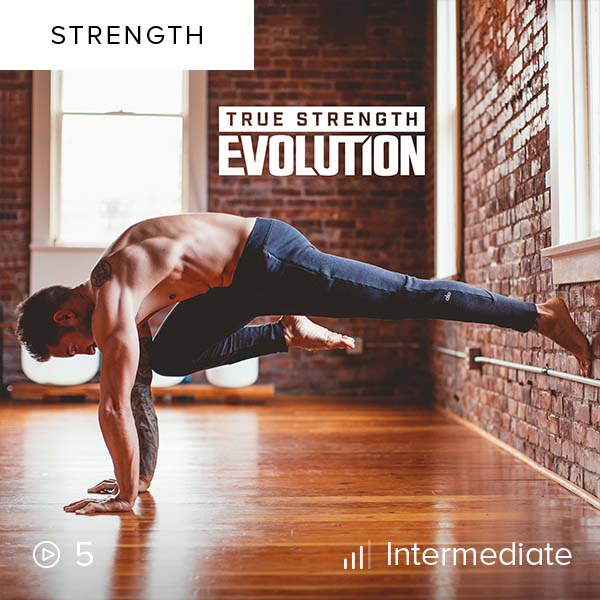 True Strength Evolution 1    Discover and build your true strength as you reach your limit, only to discover that you're able to push yourself one step further.