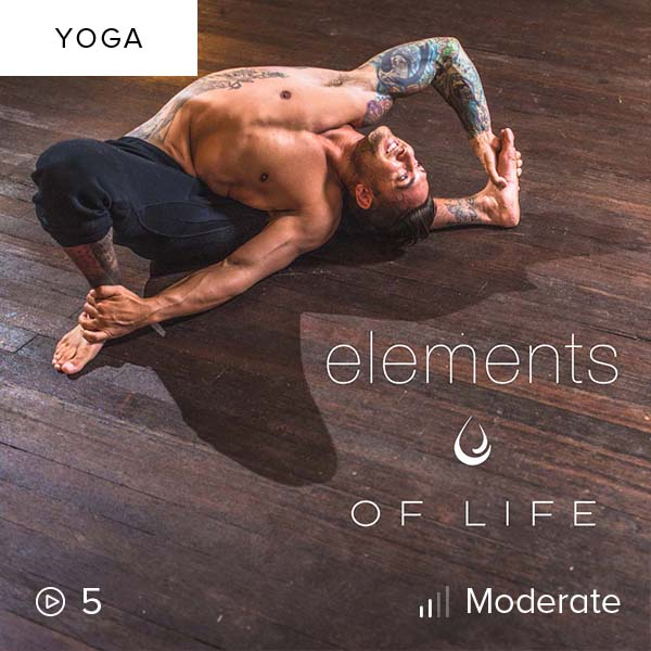 Elements of Life    Tap into the fundamental characteristics that connect us to each other and to the universe in this elements-inspired Vinyasa flow series.
