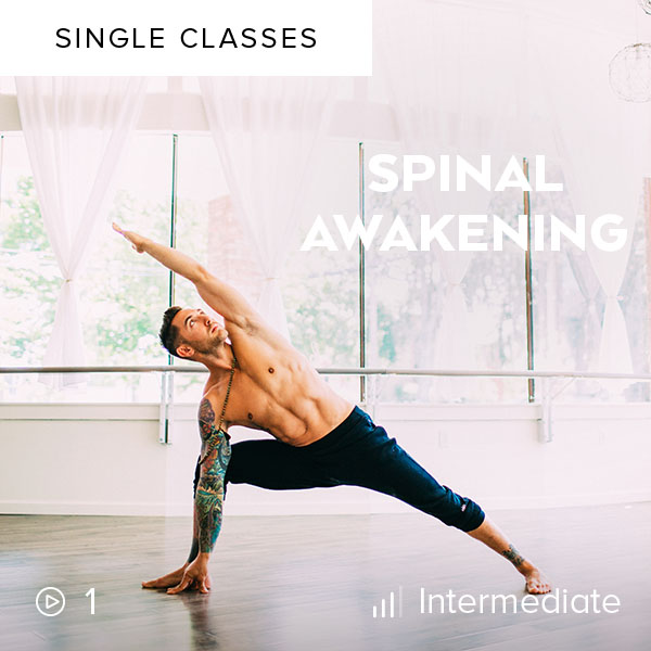 Spinal Awakening    Lengthen, strengthen, and create space in your spine as you move through backbends and deep twists in this energizing 60-minute Vinyasa flow.
