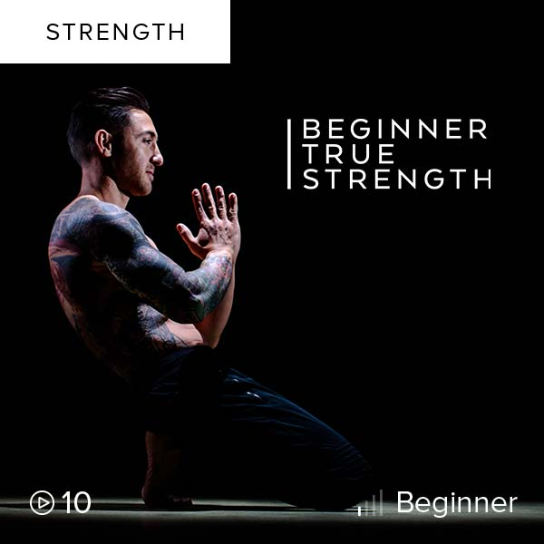 Beginner True Strength    Kick off your strength-building journey here. This is a series systematically designed to create a foundation of strength and stability.