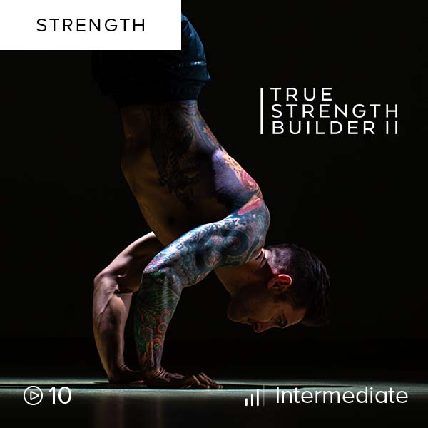 True Strength Builder II    Maximize your strength routine as you challenge your self with these intense routines. You'll leave this month-long program stronger than ever before.