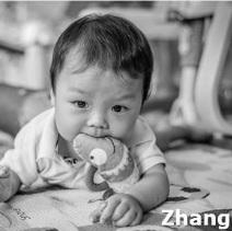 ZHANG H