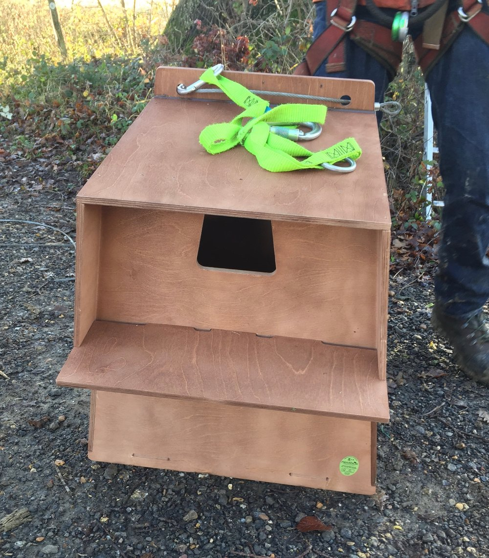 A new home for barn owls about to be hoisted