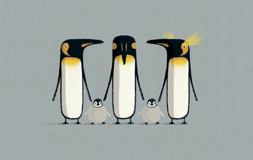 animal penguins.jpg