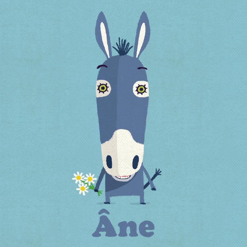 4 donkey.jpg