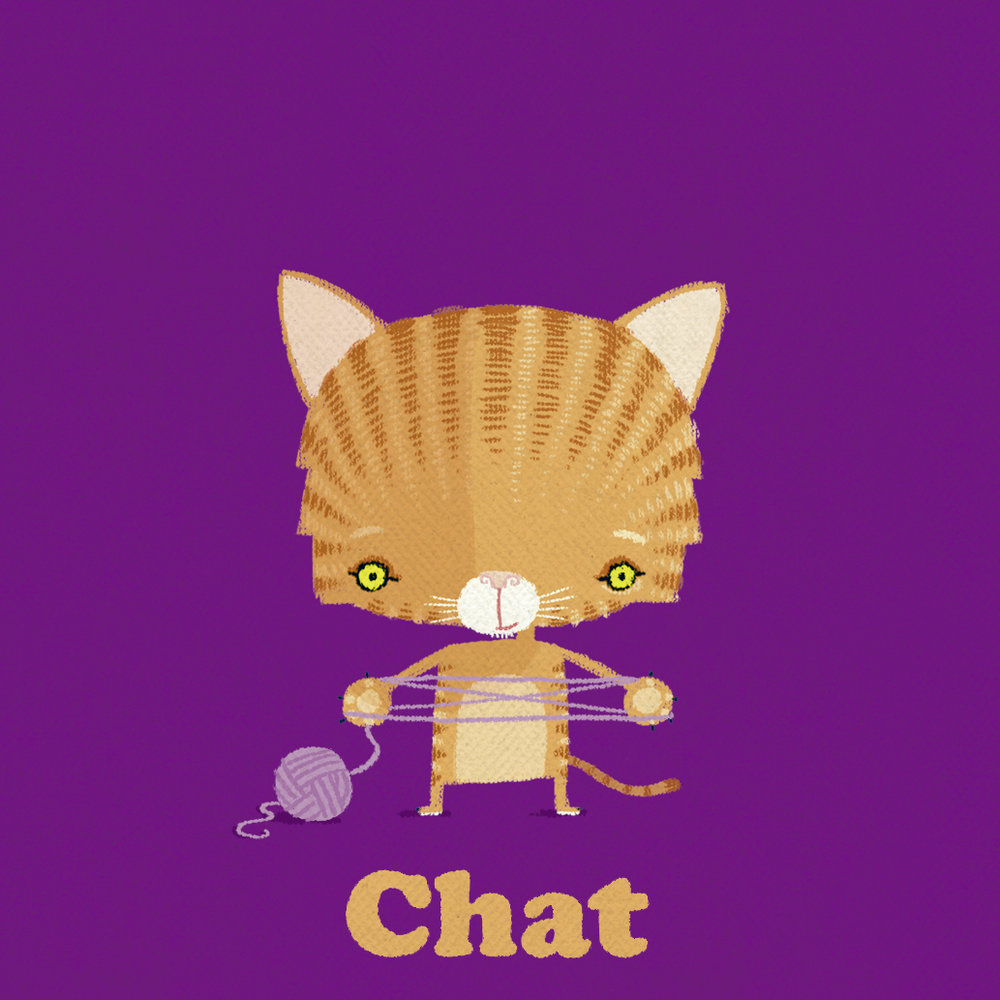 10 cat.jpg
